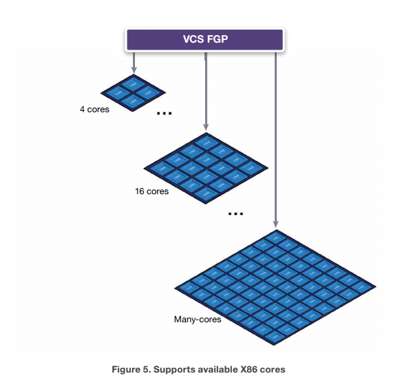 VCS多核技术,Fine-Grained Parallelism,FGP